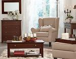 Aranzacje salonu klasyczny salon i dekoracyjne dodatki Tchibo 4